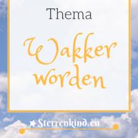 categorie Wakker worden - Spiritueel ontwaken, alle gerelateerde blogs.